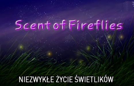 Niezwyk³e ¿ycie ¶wietlików / Scent of Fireflies (2001) TVRip.XviD / PLSUB
