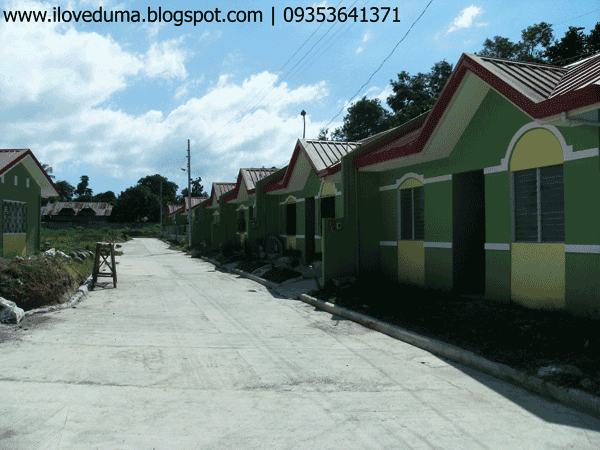 Dumaguete house for sale view of the subdivision nearing completion - Del Pilar picture