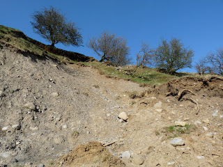 A bit of a mess at the landslip