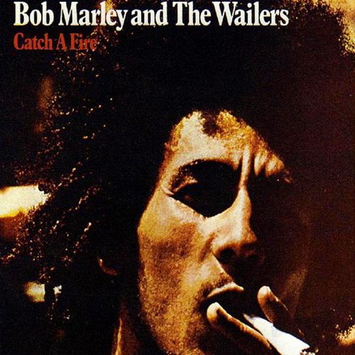 "Bob Marley and The Wailers - ""Catch A Fire"" (1999)  PL.DVBRip.XviD / Lektor PL"