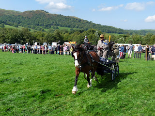 Loweswater Show - Gee up!!!
