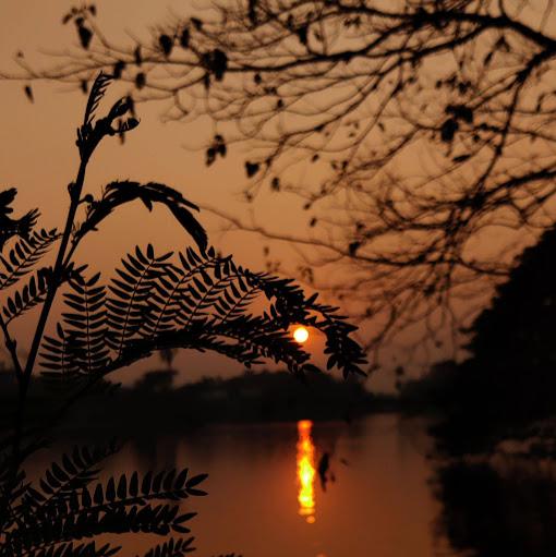 Aditya Chowdhury - photo