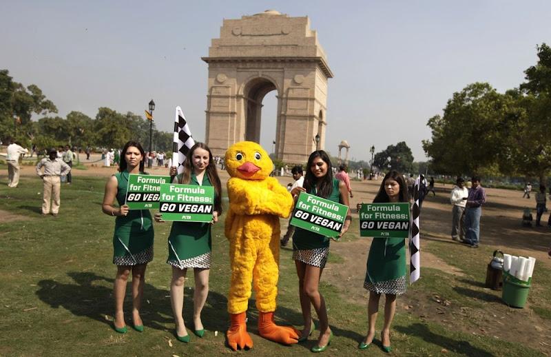 Formula for Fitness go vegan PETA перед Гран-при Индии 2012