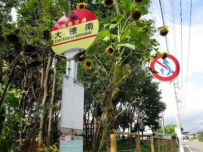 大徳南 バス停