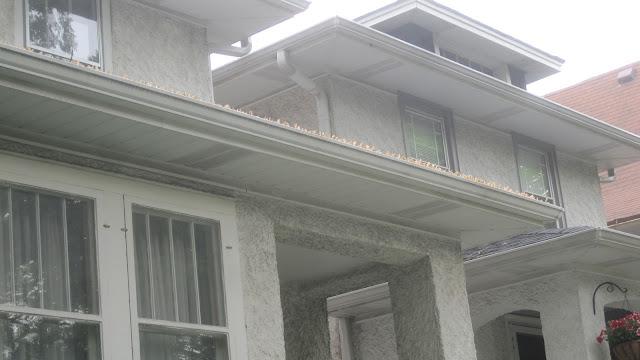 Leaved gutters