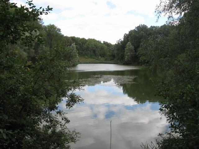 озеро в селе березка