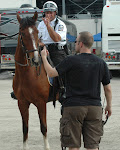 if you touch my horse I will choke you like this