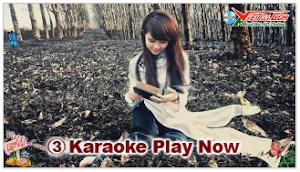 Karaoke - Việt Nam Gấm Hoa (Beat)