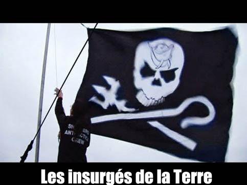 Wojownicy ekologii / Les insurg?s de la Terre (2010) PL.TVRip.XviD / Lektor PL