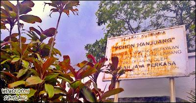 Tempat Ditanamnya Pohon Hanjuang di Kutamaya