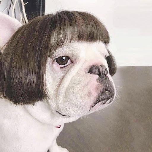 Charm Beatz review