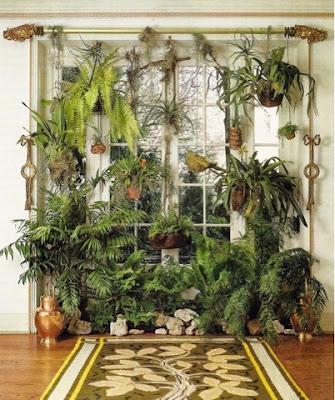 Cortina verde plantas