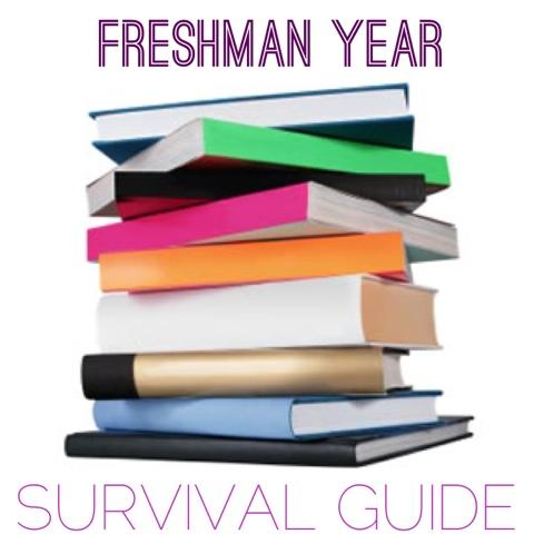 my freshman year of highschool essay