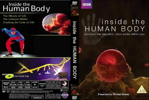 Sekrety ludzkiego cia�a / Inside the Human Body (2011) PL.TVRip.XviD / Lektor PL