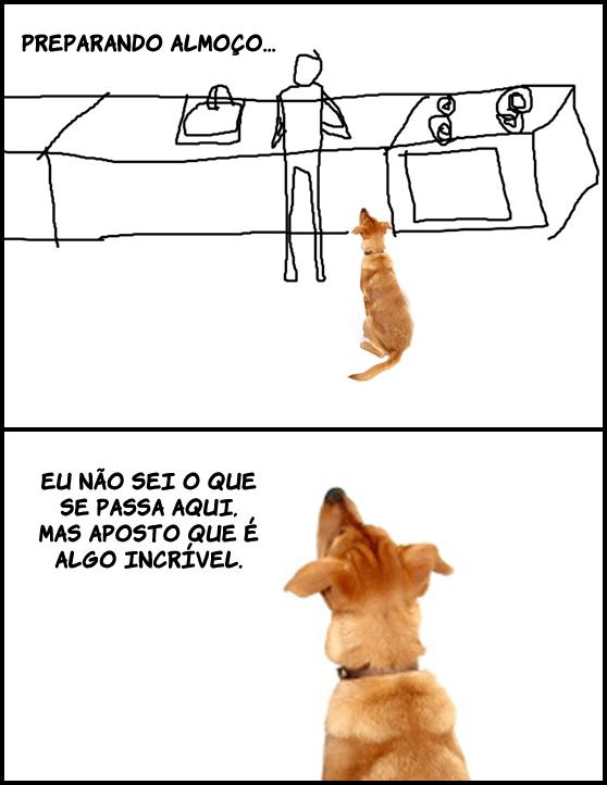 logicacanina Lógica canina