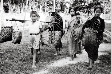siapa dan bagaimana suku mandar