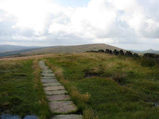 Shining Tor from Cats Tor