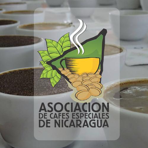 analyzing the case café de nicaragua