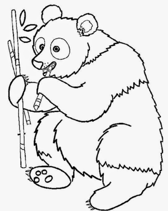 free wild animal coloring pages - Wild animals coloring pages 9 Wild animals Kids