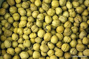 Walnuts http://indiafoodtour.com  http://foodtourindelhi.com