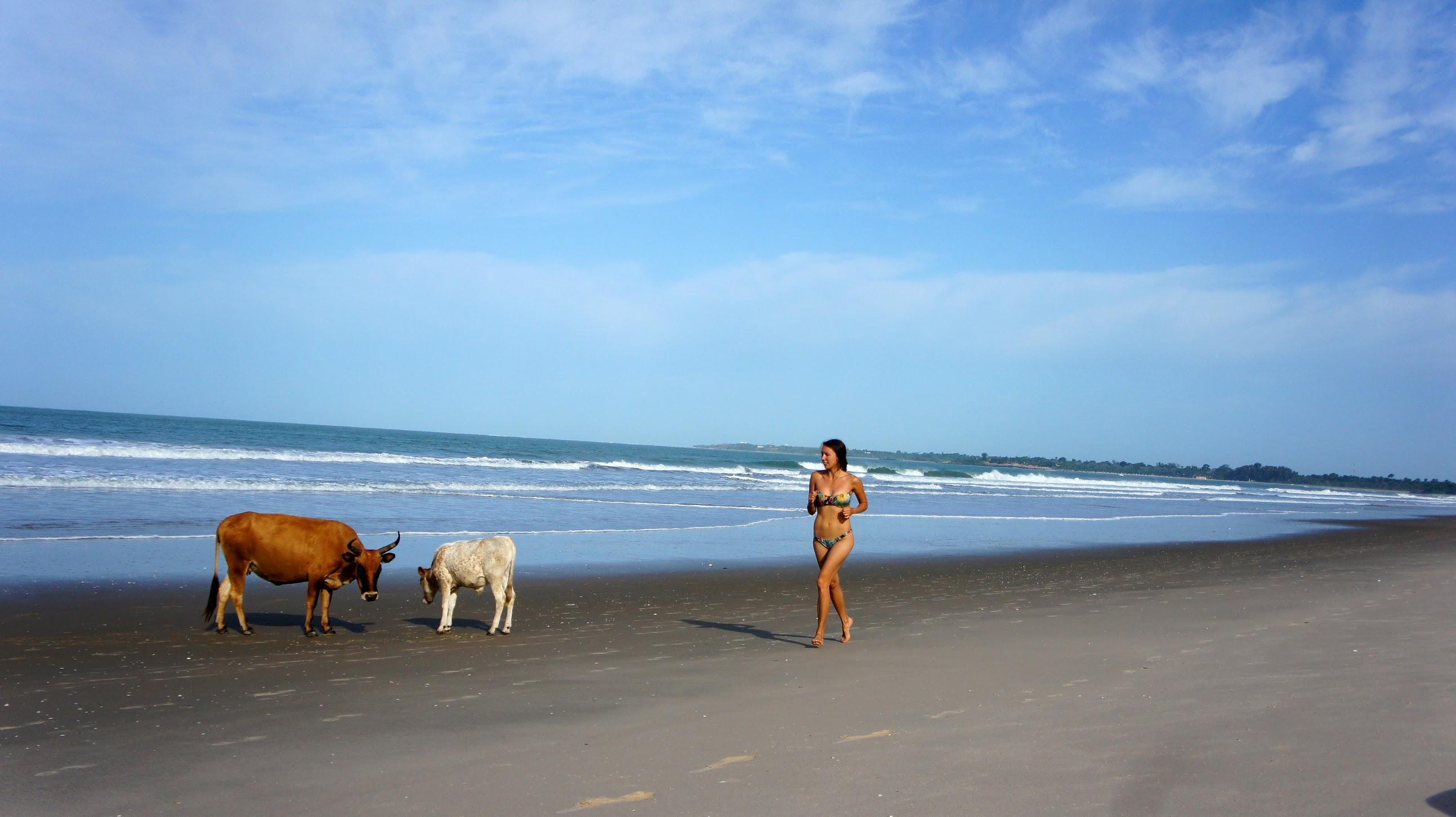 Фото с деревенского пляжа 11 фотография