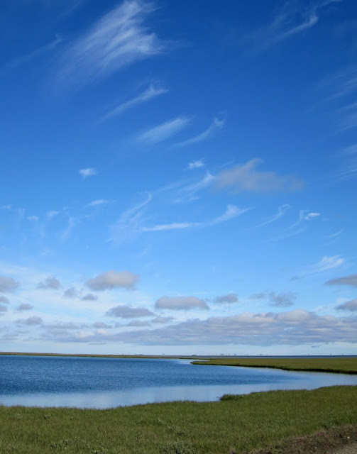 Day One - The Arctic Coastal Plain: July 30, 2010 - Mile 15