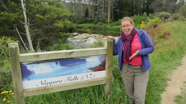 Niagara Falls, NZ. Yes, that's really it just above the sign.