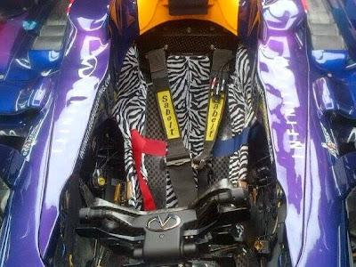 зебра сиденье в болиде Red Bull Себастьяна Феттеля на Гран-при Испании 2014