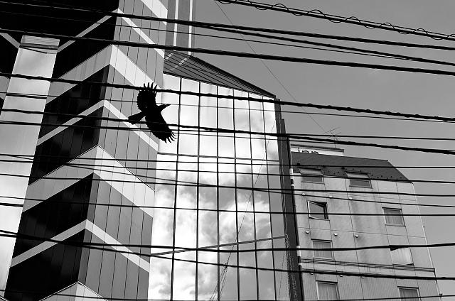 Shinjuku Mad - Where do the angels hide? 02