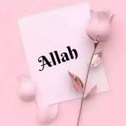 guru tegh bahadur english school aurangabad to shirdi