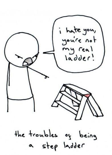 I hate you, you're not my real ladder!