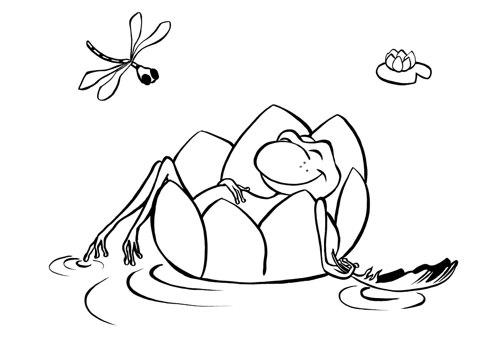 Dessin grenouille colorier - Grenouille a colorier ...