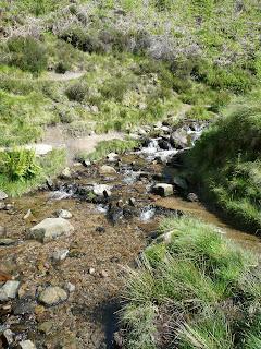 Stream from Golden Clough