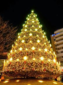 六本木ヒルズのクリスマスイルミネーション2013