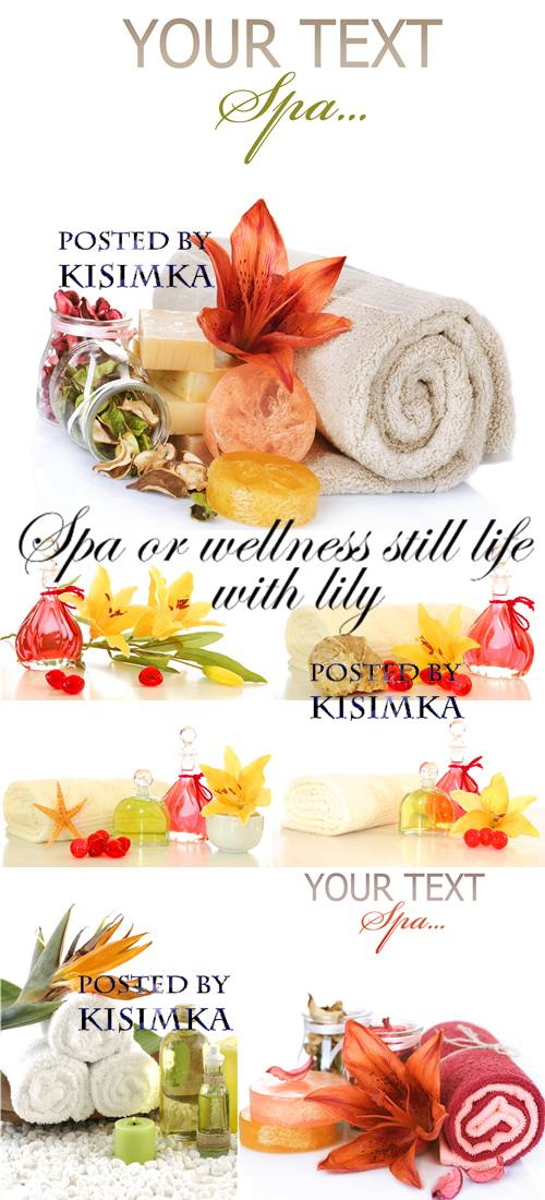 Stock Photo: Spa or wellness still life with lily