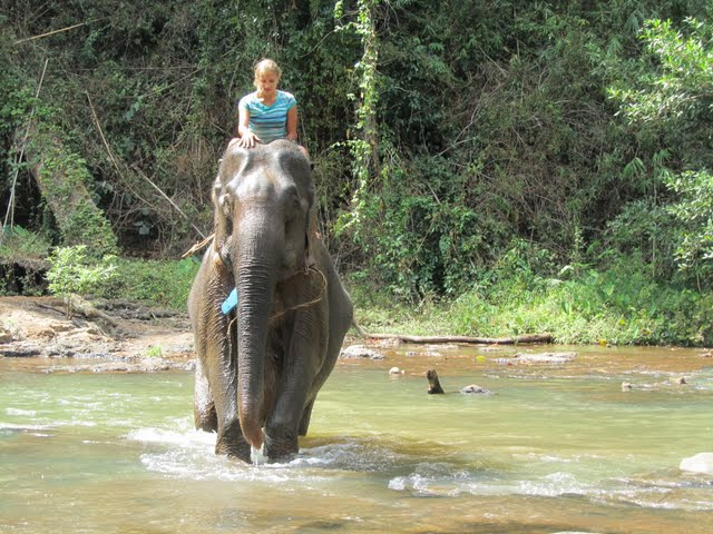 senmonorom elephant trek