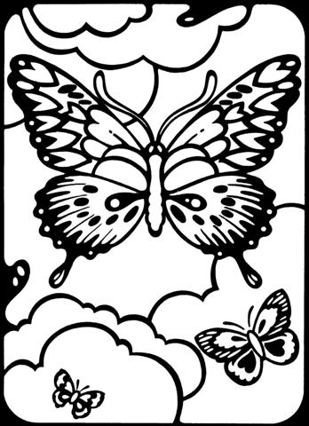 Butterfly Coloring Pages  - butterfly coloring pages for kids
