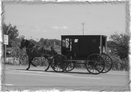 ~ Amish & Antiquing Weekend ~