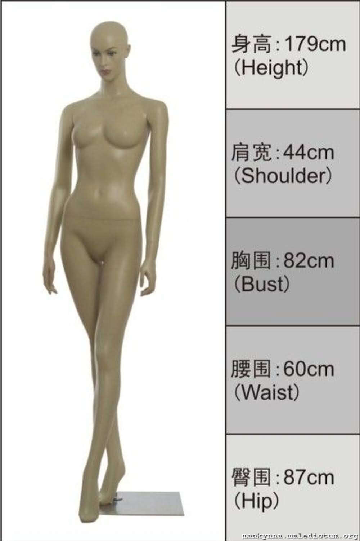 Изучение пропорций манекена
