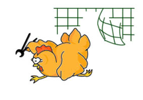 gallina in fuga