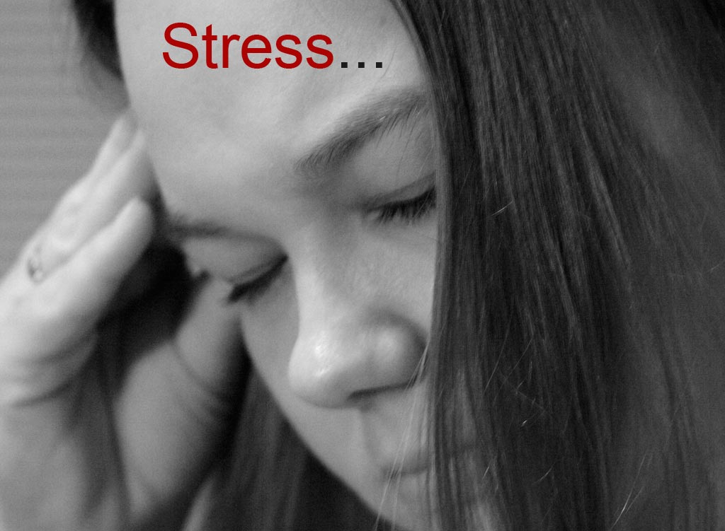 Image result for stress meaning