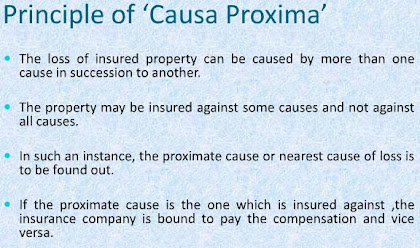principle of causa proxima
