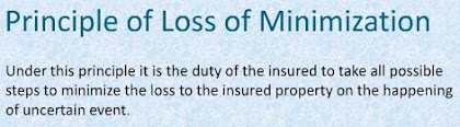 principle of loss minimization