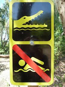 Ne vous baignez pas avec les crocodiles