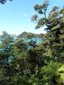 Forêt et mer