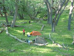 Bivouac dans la forêt