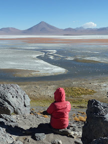 Canadienne rose devant la laguna Colorada