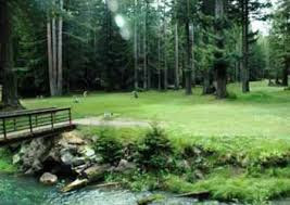 Golf Course «Brooktrails Golf Course», reviews and photos, 24860 Birch St, Willits, CA 95490, USA