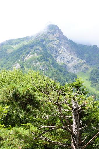 明神館の前から明神岳の写真