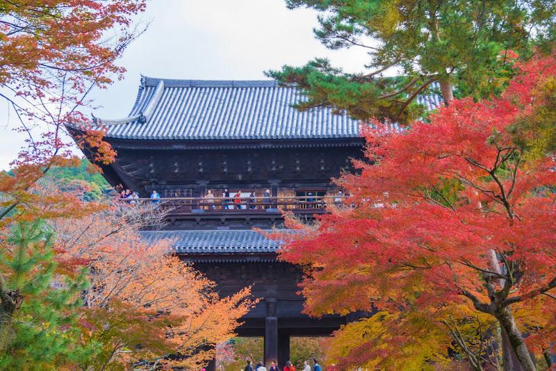 京都 南禅寺 紅葉 写真1